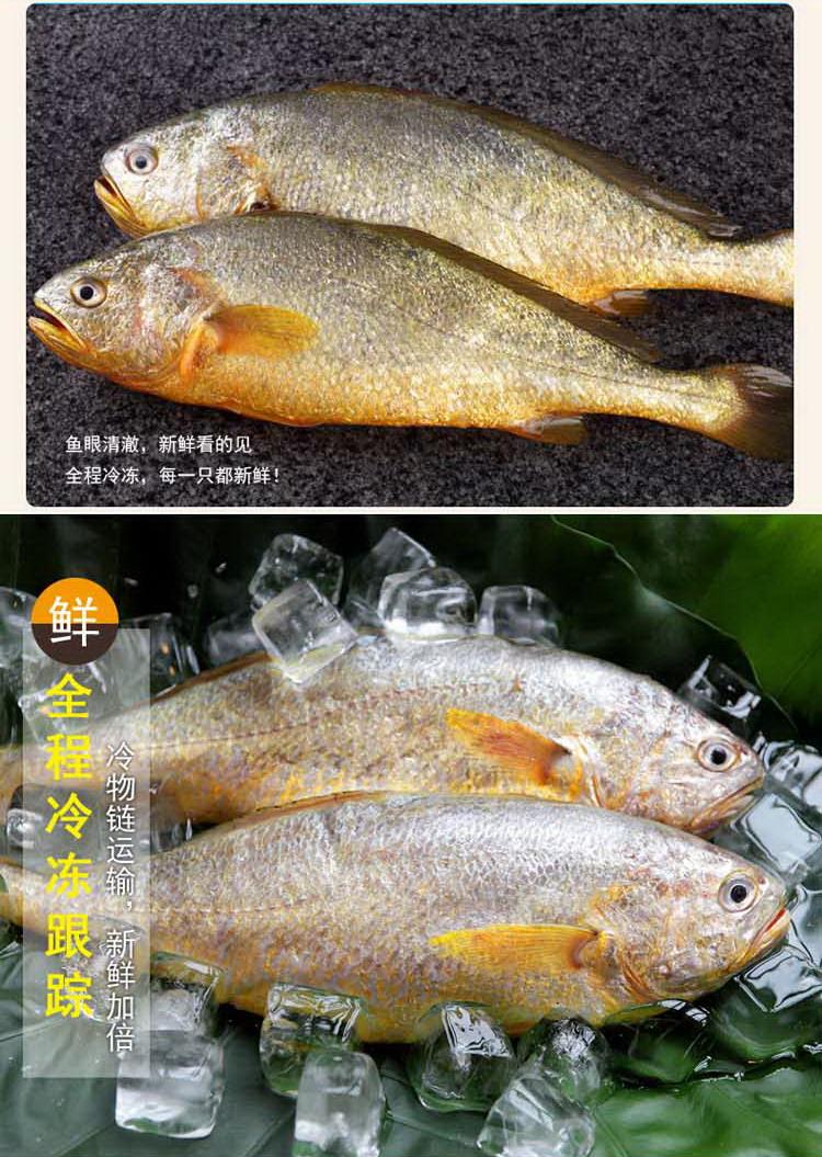 海天下大黄鱼500g/袋低价